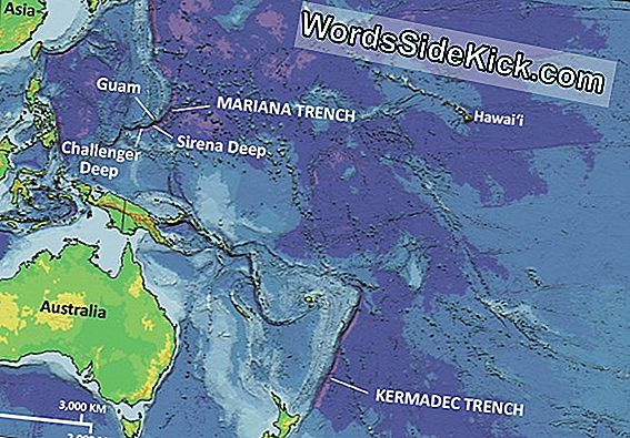 Mariana Trench: The Deepest Depths