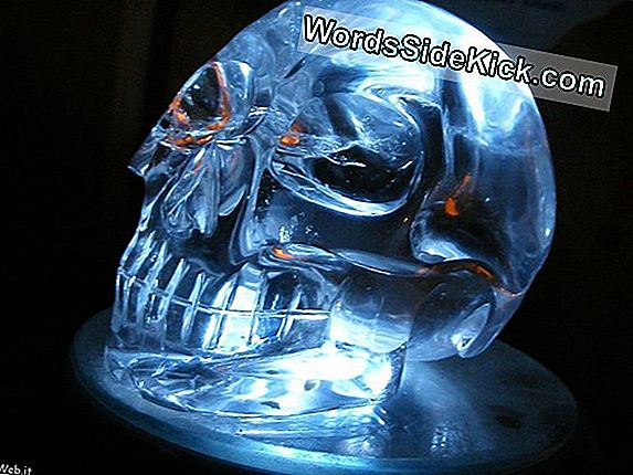 Crystal Skulls: Legend, Vodka E Indiana Jones