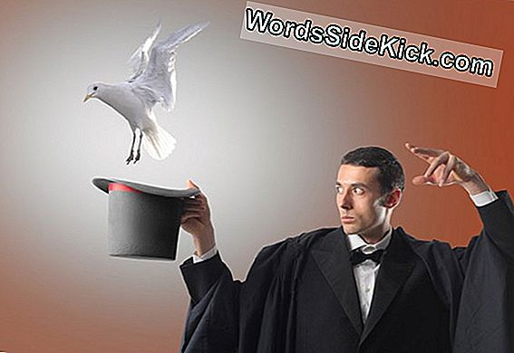 Now You See It: Neuroscientists Reveal Magicians 'Secrets