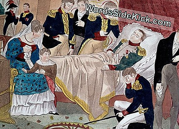 Napoleon Death: Arsenic Poisoning Ruled Out