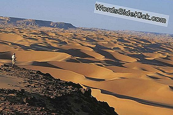 Sahara Desert Was Once Lush And Populated