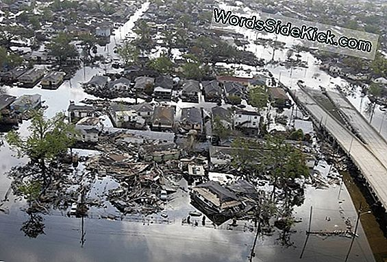 Before & After Satellite Foto'S Van De Mississippi Flood In Memphis