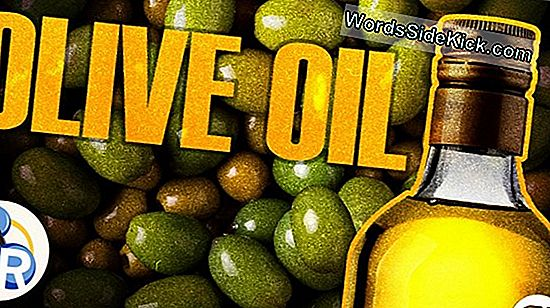 The Chemistry Of Life: Where Oil From From