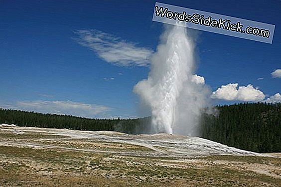 Secret Of Old Faithful Revealed