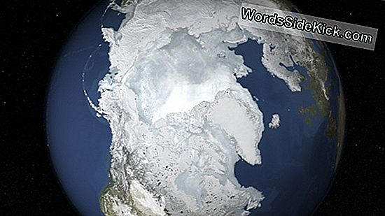 Wat Is Sea Ice?