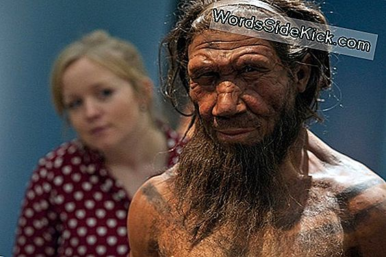 Ancient Humans Had Sex With Mystery Relatives, Study Suggests
