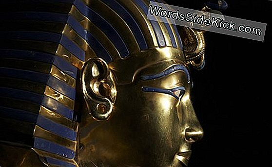 Crashed And Burned: How King Tut Died