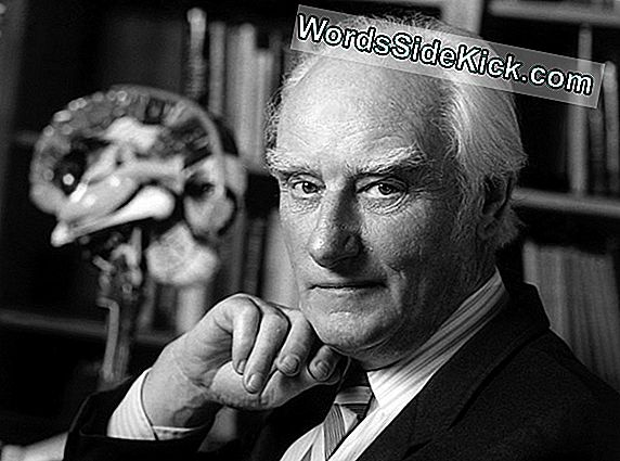 Francis Crick: Co-Discoverer Van Double Double Helix Van Dna