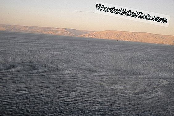 Mysterious Stone Structure Discovered Beneath Sea Of ​​Galilee