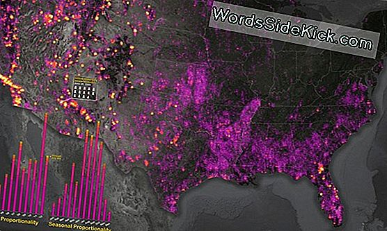 Dazzling Map Onthult Rising Menace Of Us Fires