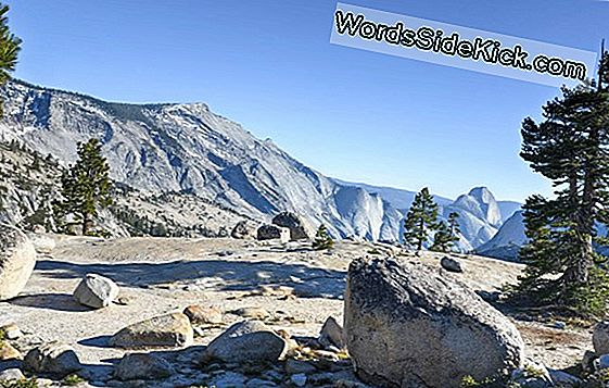 Prachtige Foto: Yosemite Sparkles In De Winter
