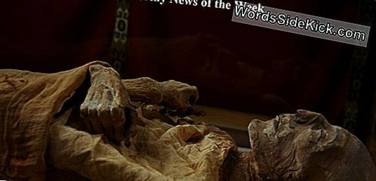 Mummy Of Forgotten Pharaoh Discovered In Ruined Egypt Tomb