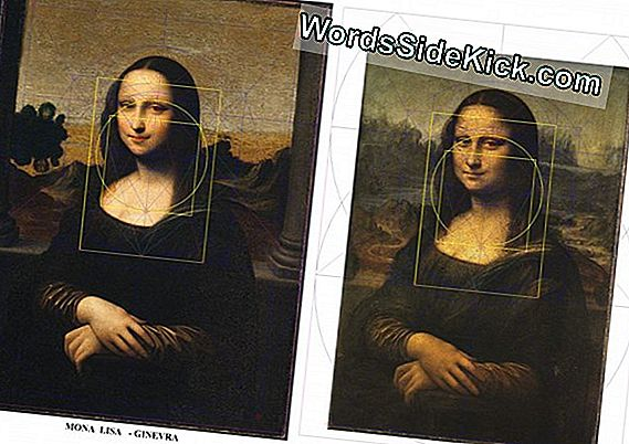 Vanishing Da Vinci Portrait Could Be Saved By Science