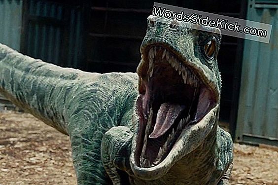 'Jurassic World' Guesses On Dinosaur Sounds, Experts Say
