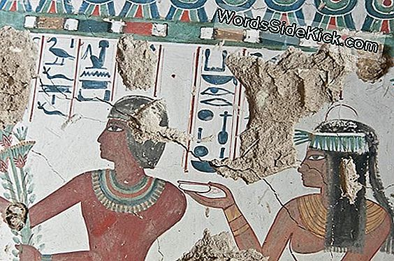 Foto'S: Newfound Egyptian Tomb Has Colorful Murals Of Man And Wife