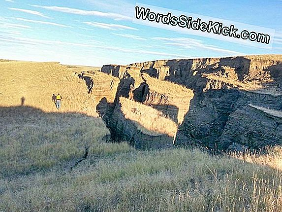 Giant Wyoming Crack Explained: A Landslide Brought It Down