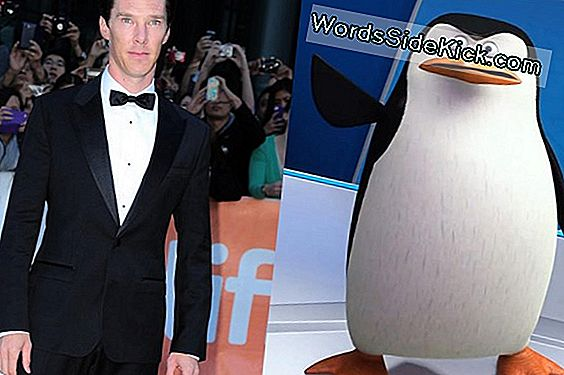 Dapper Blue Penguin: Tux Is Eerst Een Gevederde