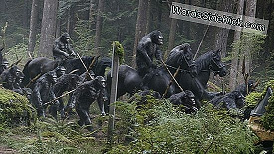 'Dawn Of The Planet Of The Apes': Digitale Effecten Wauw In Trailer