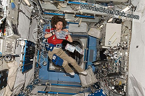 Deep-Space Heart Health: Astronauts Face Cardiac Problems