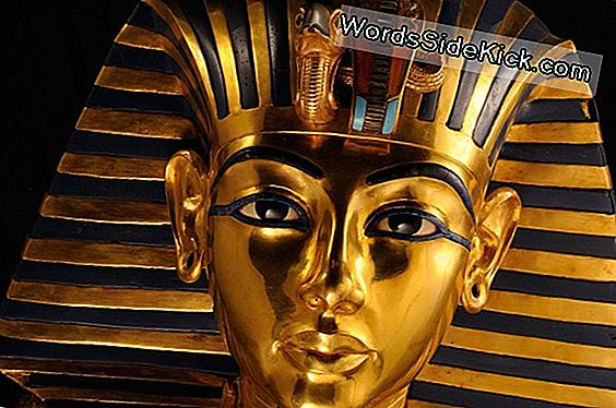 Tutankhamun: The Life & Death Of The Boy Pharaoh
