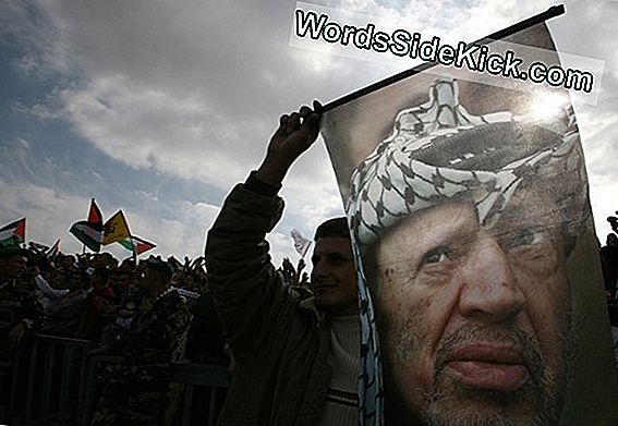 Yasser Arafat: The Dark History Of Polonium