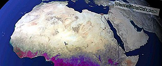 Early Earth Was Purple, Study Suggests