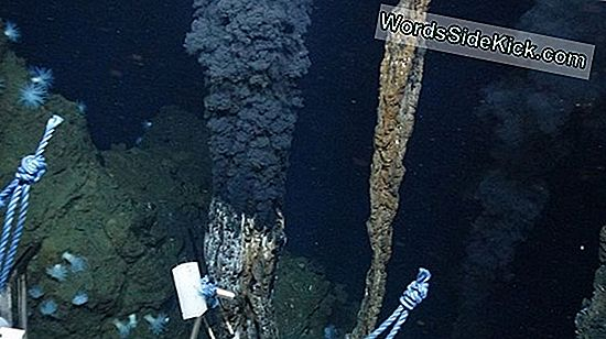 Expedition Explores World'S Deepest Hydrothermal Vents