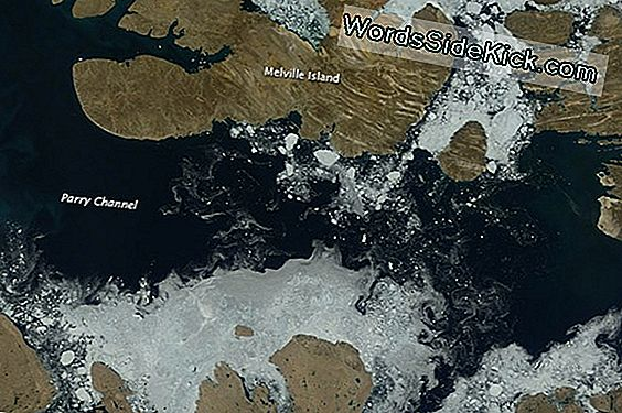 Ice Melt In Northwest Passage Spotted By Satellite