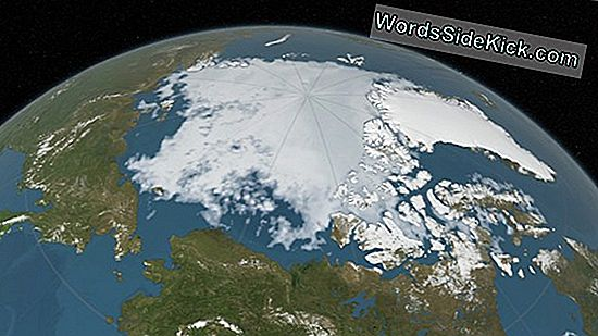 In Arctic Sea, Winter Ice Ties Voor Record Februari Laag