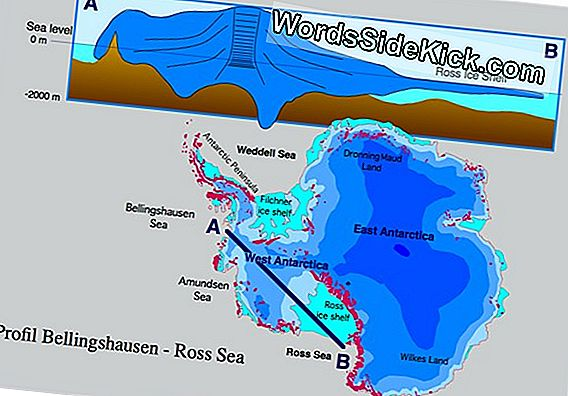 Is Global Warming Melting Antarctica'S Ice?