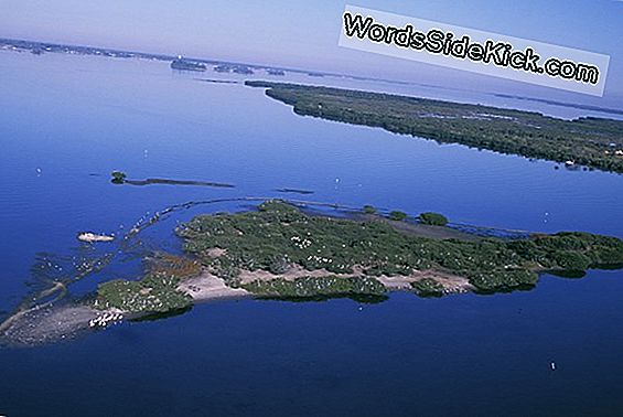 New Us Wildlife Refuge Established In Florida