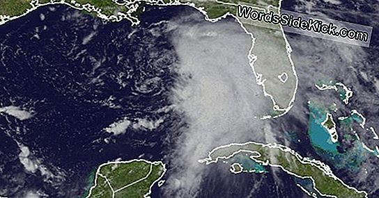 Tropical Storm Debby Forms In Gulf