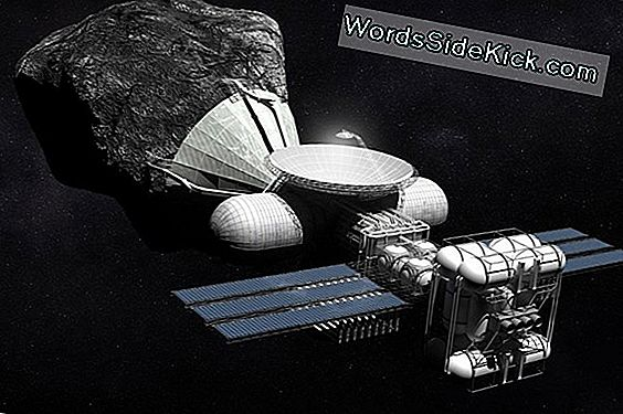 Verzet Asteroid Mining Space Law?
