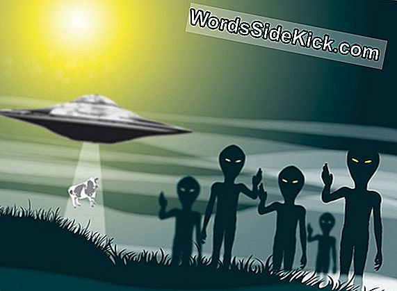 Alien Abductions May Be Levid Dreams, Study Shows