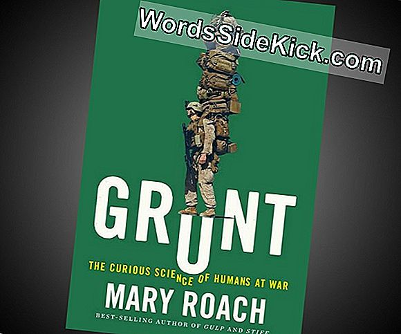 'Grunt: The Curious Science Of Humans At War': Een Vraag En Antwoord Met Mary Roach