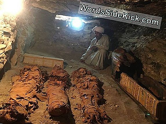 Ancient Goldsmith'S Tomb Filled With Mummies Ontdekt In Luxor