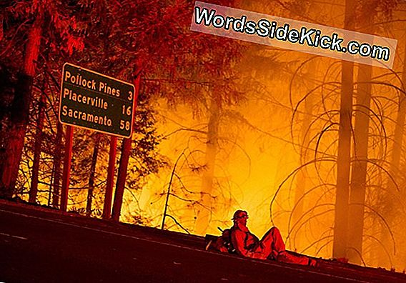 California'S Spreading Wildfires: What Are Katabatic Winds?