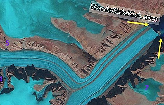 New Icy Island Forms Als Arctic Glacier Retreats