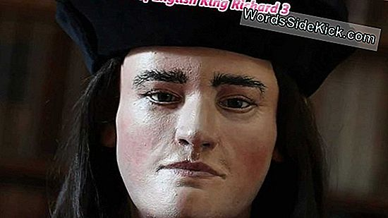 Battle-Bruised Skeleton King Richard Iii