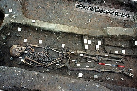 Mystery Behind Mass Mass Grave Of Viking Warriors Finally Solved