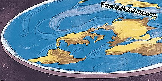 Flat Earth: Wat Is De Vreemdste Complottheorie Op Internet?