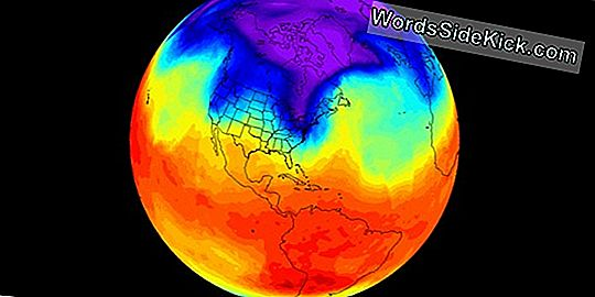 Polar Vortex: The Chilly Science Of An Arctic Blast