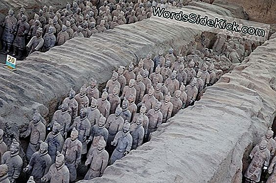 Terracotta Warriors: Afterlife Için Bir Ordu