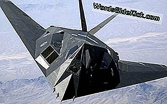 Fuerza Aérea de los Estados Unidos F-117A Nighthawk Stealth Fighter