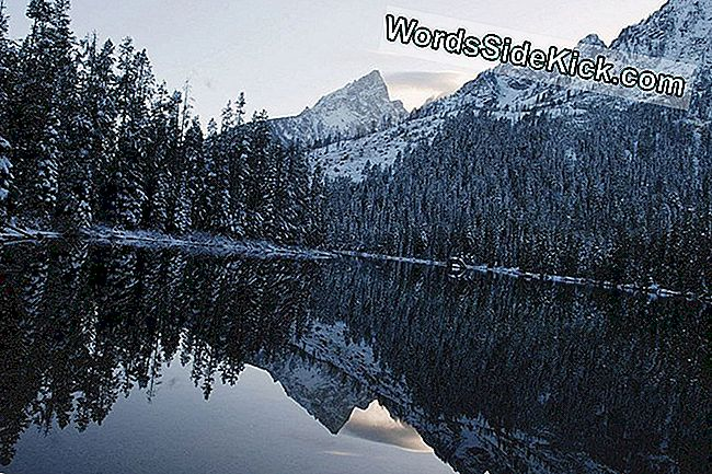Photo: Winter Wonderland Dans La Chaîne De Teton