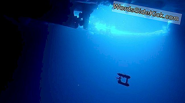 Robot Sub Maps Underside Of Antarctic Ice En 3-D