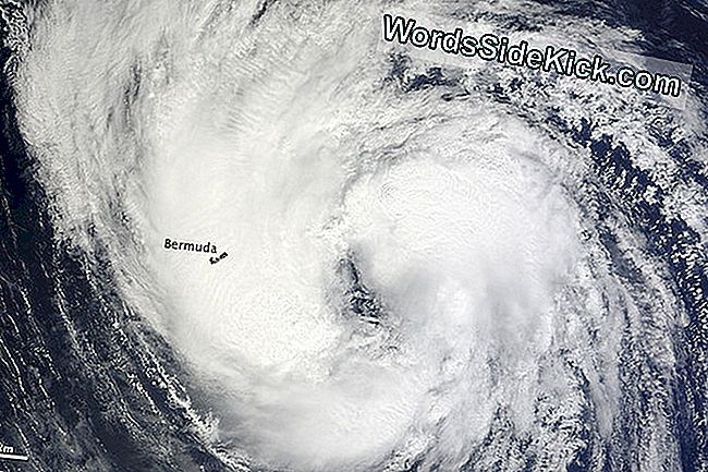 Tropical Storm Leslie Spied Over Bermuda