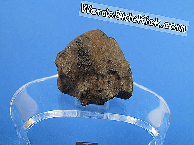 Meteoritos: Rocas Que Sobrevivieron Fiery Plunge To Earth