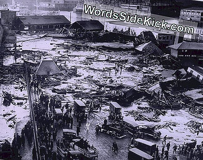 Great Molasses Flood Of 1919: Hvorfor Denne Deluge Of Goo Var Så Dødelig