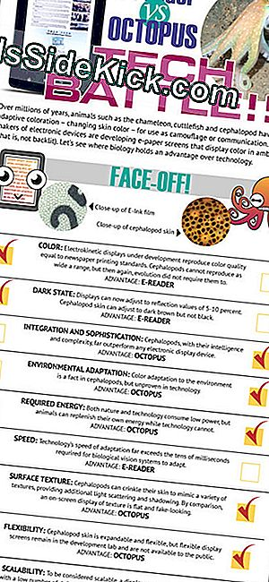 Hvordan E-Readers Stack Up Against Octopus Skin (Infographic)